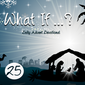 Advent Devotional Christmas Day Entry