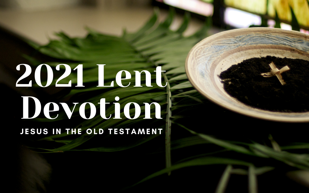 palm leaves, ashes, palm cross-- 2021 lent devotion image