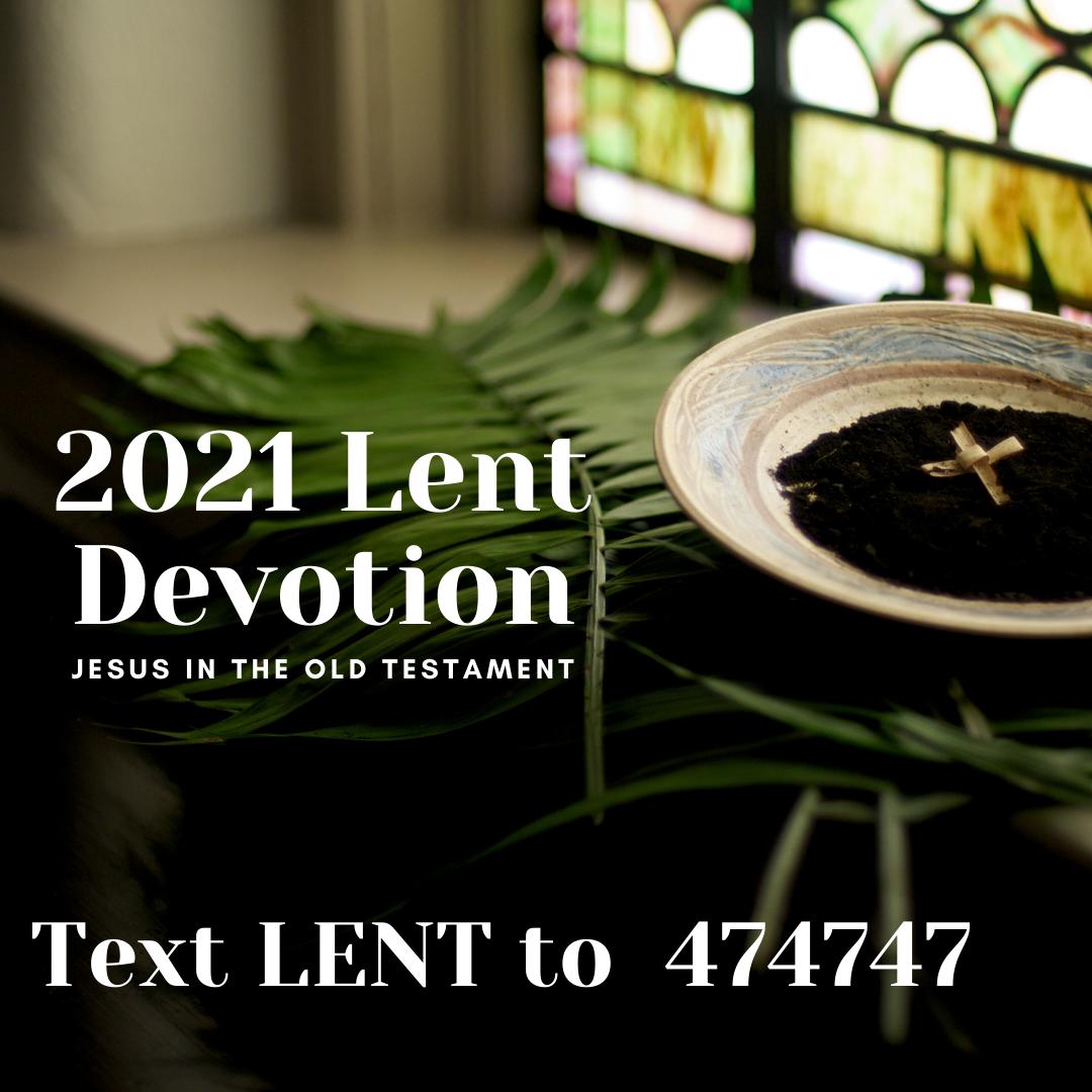 palm leaves, ashes, palm cross-- 2021 lent devotion image